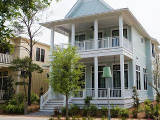 36 Mist Flower - Watercolor vacation rentals