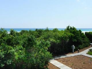 Spacious 4 bedroom Apartment in Watersound Beach with Internet Access - Watersound Beach vacation rentals