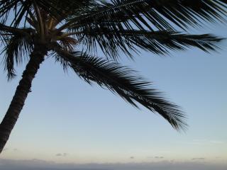 Great 2BD apt. in Kihei(MKLKB310) - Kihei vacation rentals