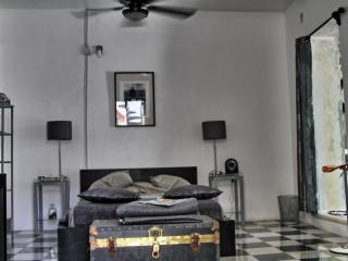 BNB La Pantera Negra Black and White Room - Merida vacation rentals