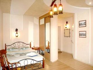 Studio apartment in Kiev center - Ukraine vacation rentals