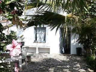 Casa Grande - large Spanish rural/beach house - Barbate vacation rentals