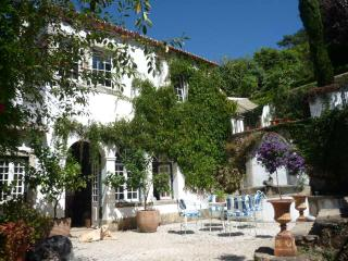 Bright 4 bedroom Colares House with Internet Access - Colares vacation rentals