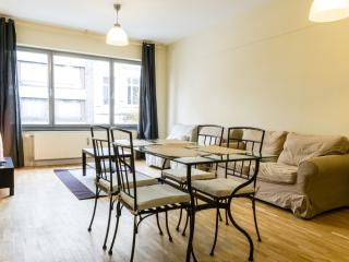 ID 3365- Bright 1br flat in Brussels city centre - Brussels vacation rentals