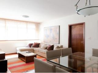 Cozy Apartment with Parking and Washing Machine in Sao Paulo - Sao Paulo vacation rentals