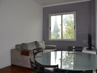 Pinheiros Reboucas Single Room V - Sao Paulo vacation rentals