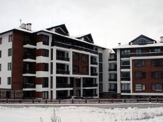 Comfortable Condo with Internet Access and Central Heating - Bansko vacation rentals