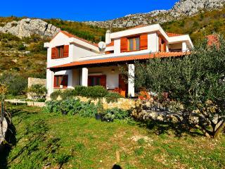 Luxury Villa Bobica Split - Kastel Kambelovac vacation rentals