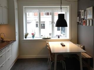 Nice renewed Copenhagen apartment near the beach - Copenhagen vacation rentals
