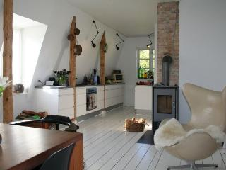 Large Copenhagen villa apartment at Charlottenlund - Copenhagen vacation rentals