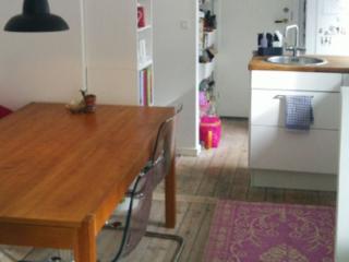 Cosy Copenhagen apartment  at Jaegersborggade area - Copenhagen vacation rentals