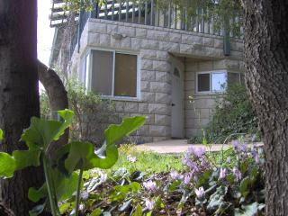 Beautiful Suite,amazing view,Galilee,North district - Nazareth vacation rentals