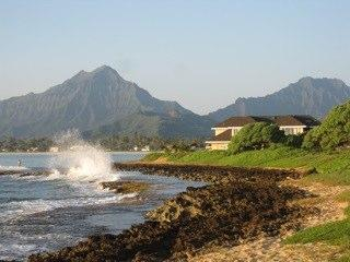 Welcome to Kapoho Hale! - Kapoho Hale- Luxury Home on the Water with Amazing Views! - Kailua - rentals