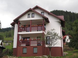 Villa Cetina, Bucovina - Painted Monasteries' Land - Pojorata vacation rentals