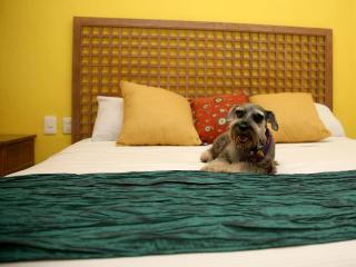 Pet Friendly Furnished Studio - Cancun vacation rentals