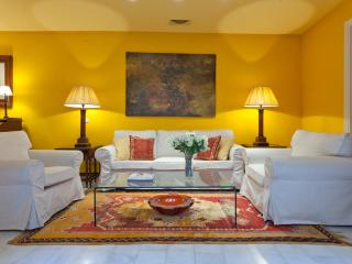 Justino Neve - Next to Cathedral and Palace. Views - Seville vacation rentals
