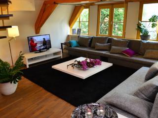 Anat Apartment - Dam Square - Amsterdam vacation rentals