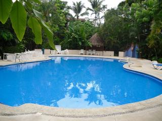 Condo Delfin - Puerto Vallarta vacation rentals