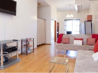 LUXURY 2 bdrm HARLEM BROWNSTONE NYC BEST location - New York City vacation rentals