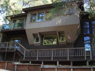 House in the Trees - Kelseyville vacation rentals