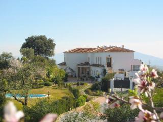 Nuevespigas. An exclusive Villa - Casarabonela vacation rentals