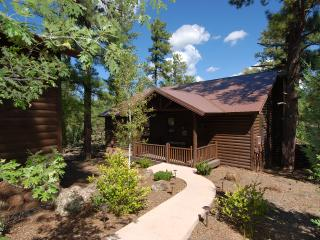 Torreon Cabin with Huge Private Deck, Sleeps 8, FREE WiFi - Show Low vacation rentals