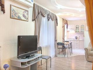 One room Kiev apartment central location - Kiev vacation rentals