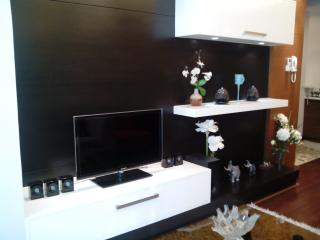 Fully Furnished 2BR Condo at BGC w Wifi - Luzon vacation rentals