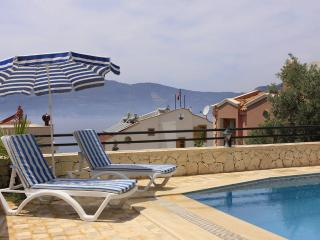 3 Bedroom Villa Kislabay (Discount Avaliable) - Kozakli vacation rentals