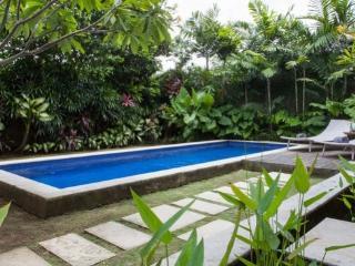 Marony Villa Seminyak - Denpasar vacation rentals
