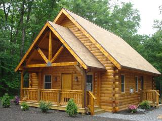 Spruce Run Hideaway:  Alone on 245 Acres of Forest - Pennsylvania vacation rentals