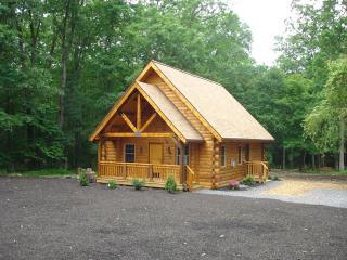 Spruce Run Hideaway:  Alone on 245 Acres of Forest - Lewisburg vacation rentals