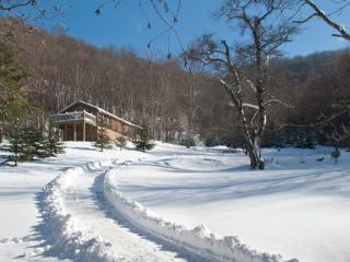 BIRDTOWN GUESTHOUSE (PRICE INCLUDES TAXES) 60ACRES - Spruce Pine vacation rentals