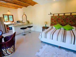 Adorable Condo with Internet Access and Microwave - Sayulita vacation rentals