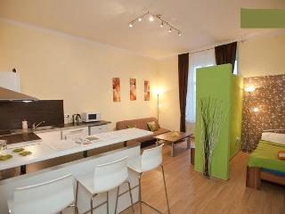 1 bedroom Condo with Internet Access in Prague - Prague vacation rentals