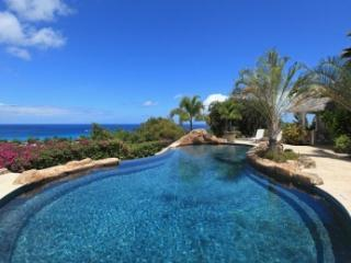 6 Bedroom Villa with Infinity Pool in Sugar Hill - Saint James vacation rentals
