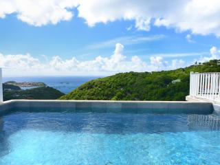 2 Bedroom Villa with Infinity Pool Overlooking the Ocean in Colombier - Anse des Flamands vacation rentals
