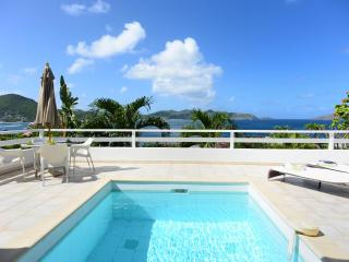 Beautiful 2 Bedroom Hillside Villa in Pointe Milou - Pointe Milou vacation rentals
