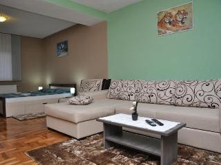 Modern Apartment near waterfalls - Plitvice Lakes National Park vacation rentals