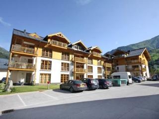 A4-8T ~ RA7218 - Salzburg Land vacation rentals