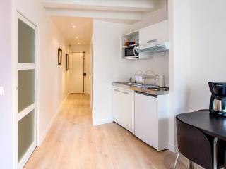 Bastille Square 1 Bedroom Paris Apartment - Paris vacation rentals