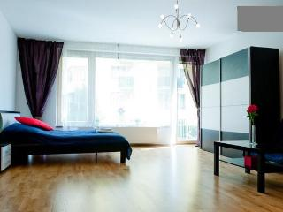 Full Equipped Flat Just For You - Prague vacation rentals