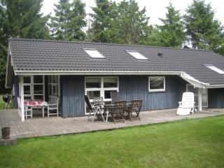 Cozy house - close to the beach - Frederiksvaerk vacation rentals