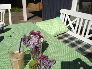 Cozy house - close to the beach - Hundested vacation rentals