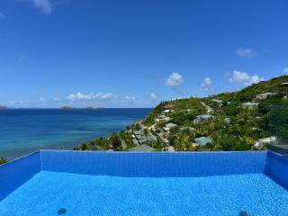 Stylish 3 Bedroom Villa Overlooking the Ocean in Pointe Milou - Pointe Milou vacation rentals