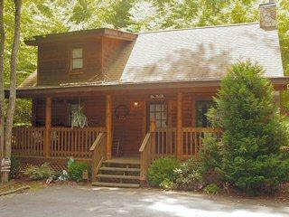 ER54 - MOUNTAIN MAJESTY - Image 1 - Pigeon Forge - rentals