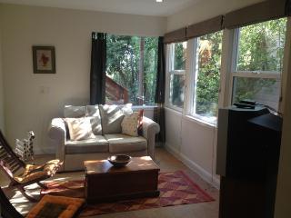 Great Noe Valley Studio(ZNVD675A) - San Francisco vacation rentals
