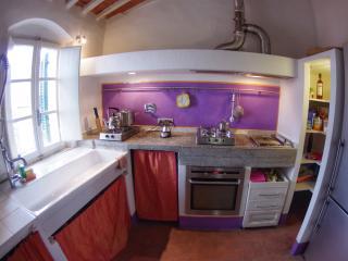 Tuscan Maremma apartment in Castagneto Carducci - Castagneto Carducci vacation rentals
