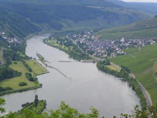 big apartment with beergarden - Enkirch vacation rentals