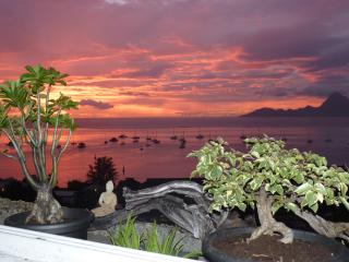 Cozy Condo in Punaauia with A/C, sleeps 1 - Punaauia vacation rentals